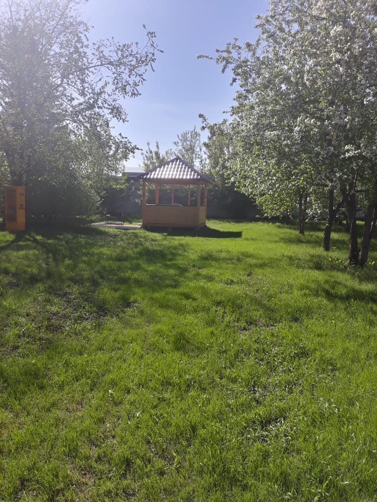 Елки, комплекс отдыха - №13